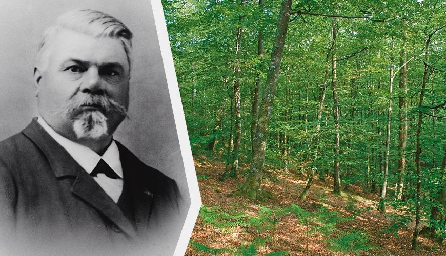Hippolyte Prou, menuisier et exploitant forestier